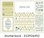 set of business card and ... | Shutterstock .eps vector #313926452