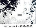 trees and branches silhouette...   Shutterstock .eps vector #313962098