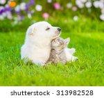 Stock photo white swiss shepherd s puppy lying with kitten on green grass 313982528