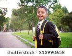 back to school. boy from... | Shutterstock . vector #313990658