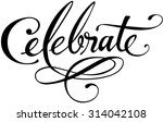 celebrate | Shutterstock .eps vector #314042108