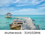summer  travel  vacation and... | Shutterstock . vector #314102846