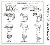 farm fresh. hand drawing set of ... | Shutterstock .eps vector #314140616