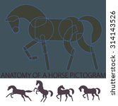 'anatomy' of a horse pictogram  ... | Shutterstock .eps vector #314143526