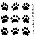 print paws of tigers  vector | Shutterstock .eps vector #314303546