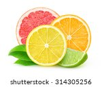 isolated citrus fruits. slices... | Shutterstock . vector #314305256