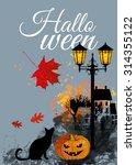 halloween vector background | Shutterstock .eps vector #314355122