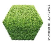 hexagon of green grass. a lawn... | Shutterstock .eps vector #314425418