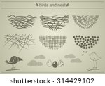 Bird's Nests. A Set Of...