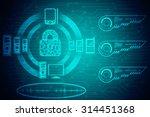 security concept  lock on... | Shutterstock . vector #314451368