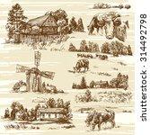 farm  cows  rural landscape  ...   Shutterstock .eps vector #314492798