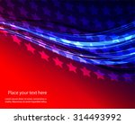 abstract image of the american... | Shutterstock .eps vector #314493992