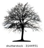 tree  vector  | Shutterstock .eps vector #3144951