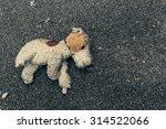 Toy Dog Abandoned On The...