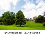 green meadows and trees  blue...   Shutterstock . vector #314598455