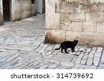 Stock photo black cat in the old town of rovinj 314739692