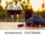 two glasses of red wine with... | Shutterstock . vector #314750606
