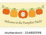 cute garland with different... | Shutterstock . vector #314800598