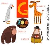 cute zoo alphabet in vector.g... | Shutterstock .eps vector #314822012