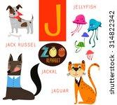 cute zoo alphabet in vector.j... | Shutterstock .eps vector #314822342