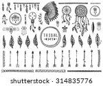 big tribal vector elements... | Shutterstock .eps vector #314835776
