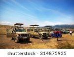 ngorongoro  tanzania   august... | Shutterstock . vector #314875925
