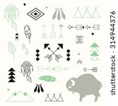 collection of native american... | Shutterstock .eps vector #314944376