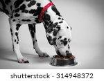 dalmatian dog eating dry food...   Shutterstock . vector #314948372