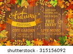 fall festival template. bright... | Shutterstock .eps vector #315156092