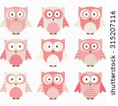 coral and grey cute owl... | Shutterstock .eps vector #315207116