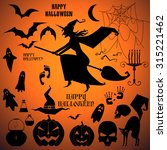 vector set with a isolated... | Shutterstock .eps vector #315221462