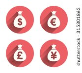 money bag icons. dollar  euro ... | Shutterstock .eps vector #315301862