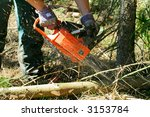 Lumberjack trimming a fir tree log with a chainsaw - stock photo