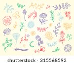 hand drawn doodles flowers and... | Shutterstock .eps vector #315568592