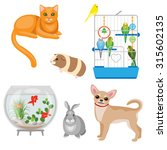 set of pets and other animal... | Shutterstock .eps vector #315602135
