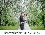 wedding couple. beautiful bride ... | Shutterstock . vector #315725162