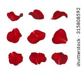 red rose petals isolated on... | Shutterstock .eps vector #315808592