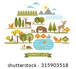 vector illustration of forest... | Shutterstock .eps vector #315903518