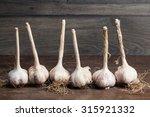 fresh garlic bulbs with long...