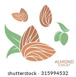 almond. icon set. isolated nuts ... | Shutterstock .eps vector #315994532