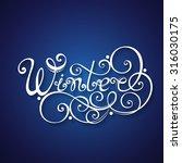 vector winter hand drawn... | Shutterstock .eps vector #316030175