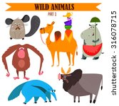 Vector Set Wild Animals In...