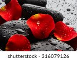 Stock photo stones with rose petals and drops of water on black background 316079126
