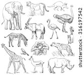 hand drawn animal planet set  | Shutterstock . vector #316197542