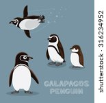 Galapagos Penguin Cartoon...