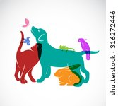 vector group of pets   dog  cat ... | Shutterstock .eps vector #316272446