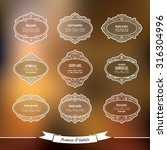vintage frames and labels on... | Shutterstock .eps vector #316304996