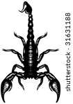 Nice Black And White Scorpion....
