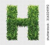 alphabet h of green grass. a... | Shutterstock .eps vector #316324592