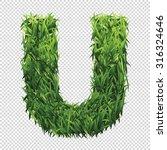 alphabet u of green grass. a... | Shutterstock .eps vector #316324646